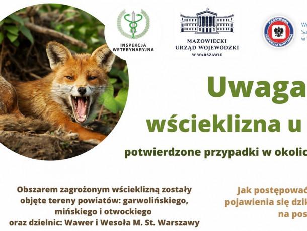 Przypadki wścieklizny u lisów na terenie województwa mazowieckiego - komunikat kuratorium